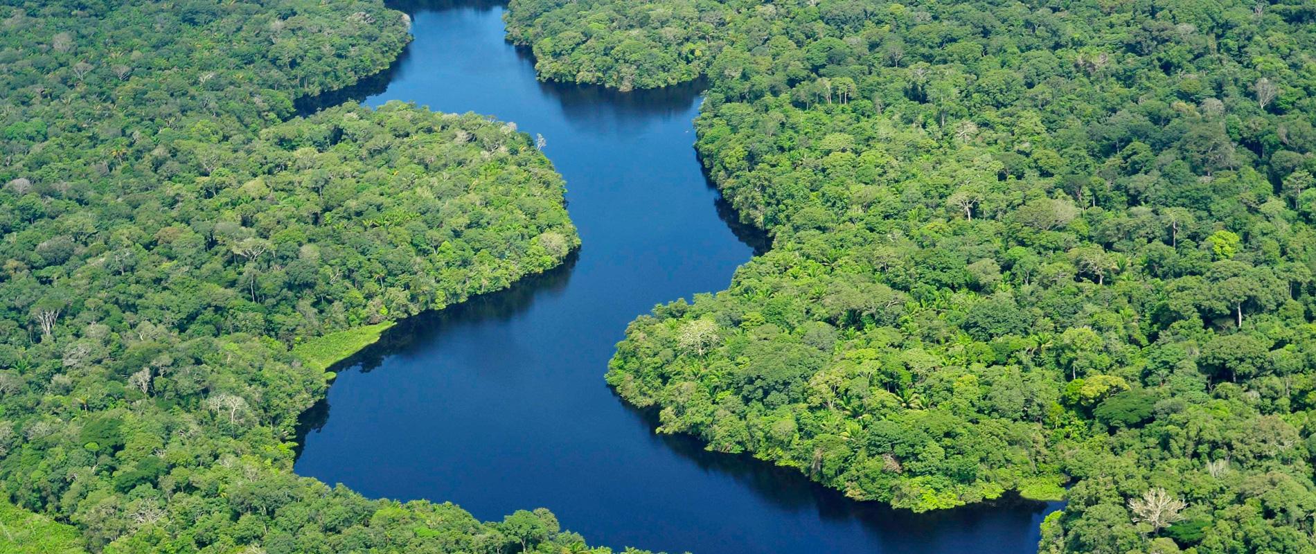 Brésil | Amazonie