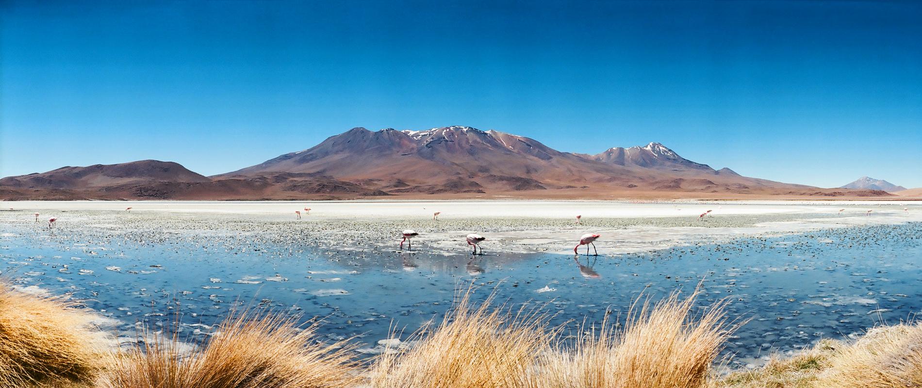 Bolivie | Lipez