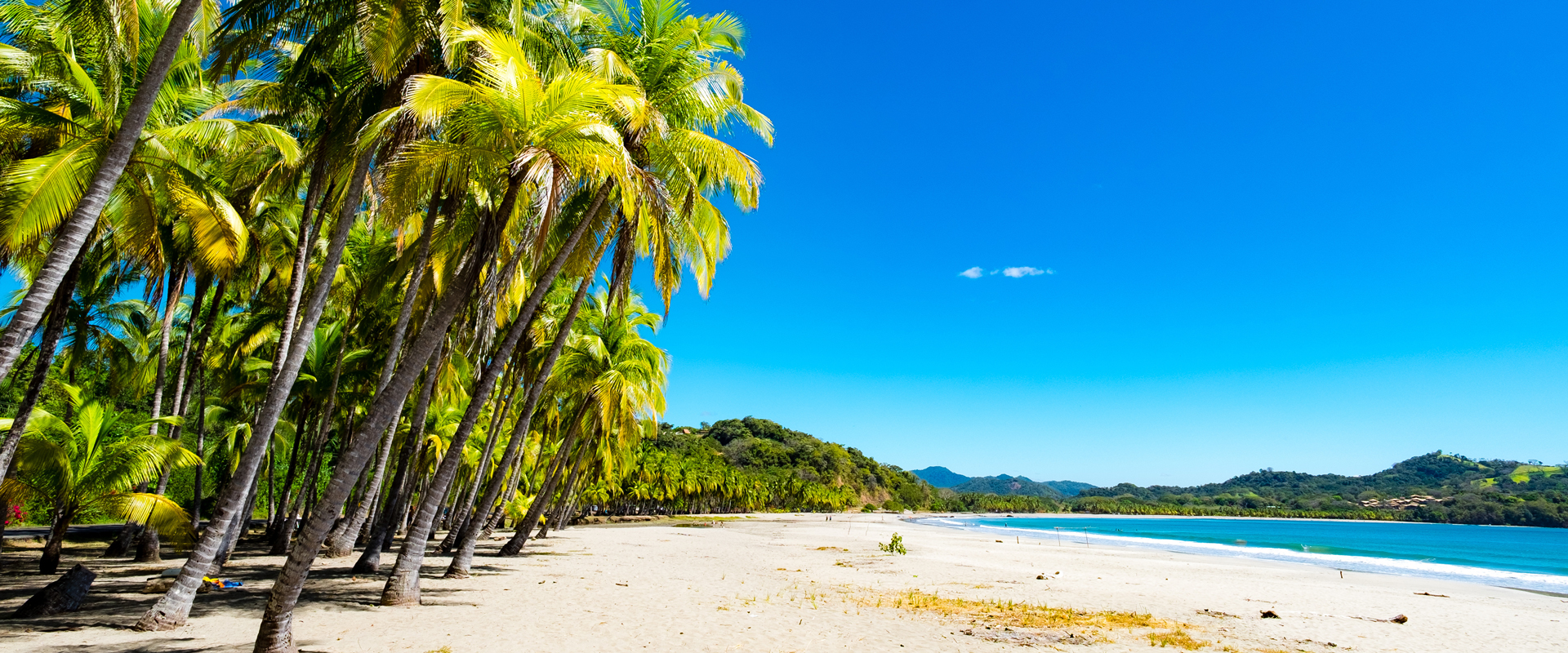 Costa Rica | Plages bordées de cocotiers