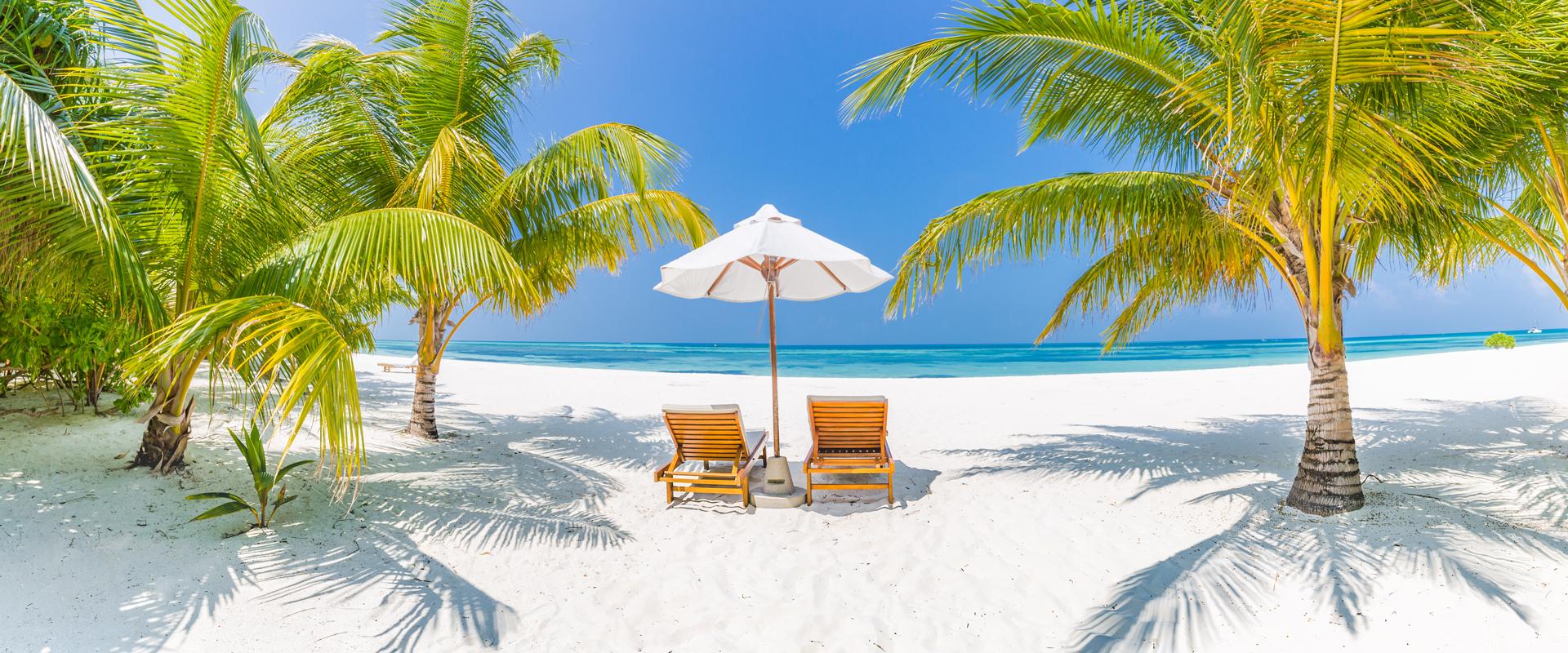 Seychelles   Farniente tropical