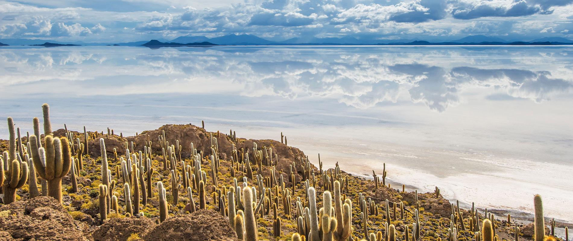 Bolivie |Salar d'Uyuni
